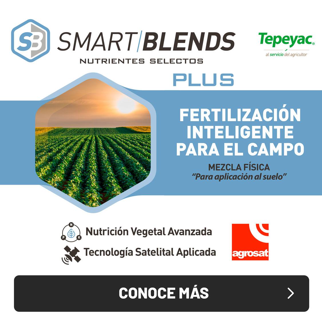 smart-blends