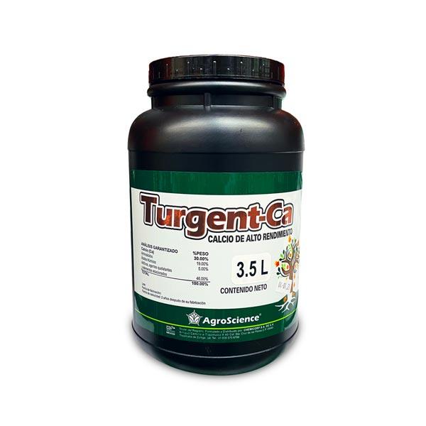 turgent_ca